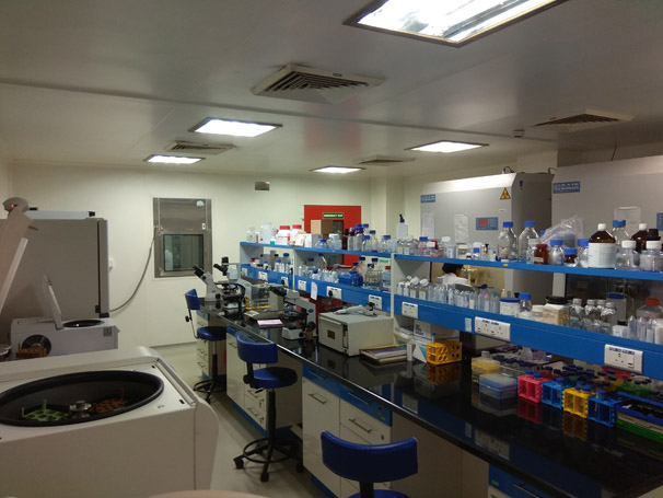 BSL 2 and 3 Laboratories-Image