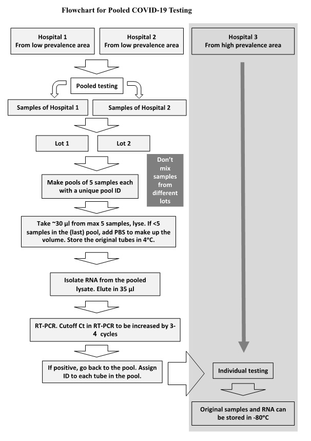 Flowchart for pooled COVID-19 testing