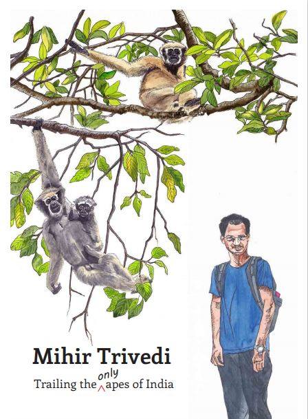 Trailing the only apes of India<span style='font-size:10px;'> (a part of I am a Scientist series)</span>